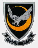 31 31 Squadron