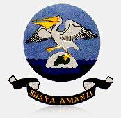 35 35 Squadron