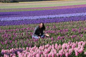 IMG 2092 300x200 Tulip Festerval