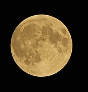 IMG 2255 288x300 Blood Red Lunar Eclipse 28/9/15 02H30