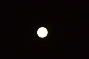 IMG 2263 300x200 Blood Red Lunar Eclipse 28/9/15 02H30