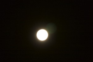 IMG 2267 300x200 Blood Red Lunar Eclipse 28/9/15 02H30