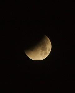 IMG 2268 241x300 Blood Red Lunar Eclipse 28/9/15 02H30