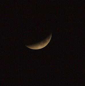 IMG 2275 297x300 Blood Red Lunar Eclipse 28/9/15 02H30