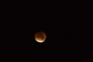 IMG 2289 300x200 Blood Red Lunar Eclipse 28/9/15 02H30