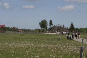 thumb IMG 2917 1024 300x200 Lithuania May 2016